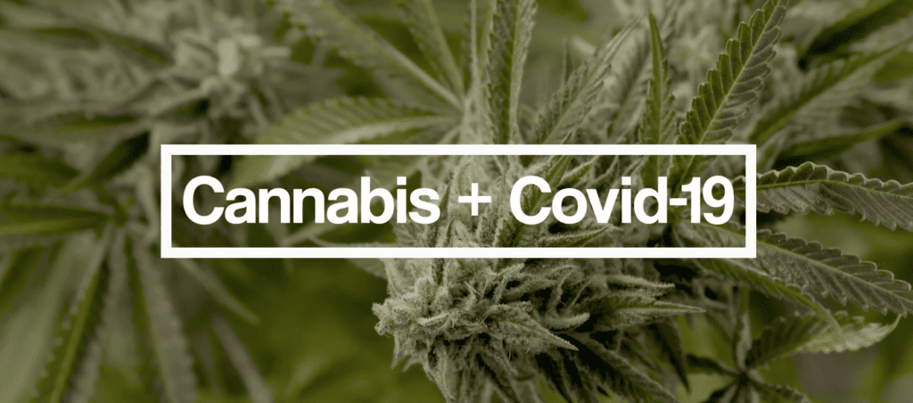 Cannabis and COVID-19 Coping