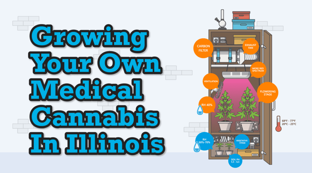 Learn How To Grow Your Own Medical Cannabis In Illinois