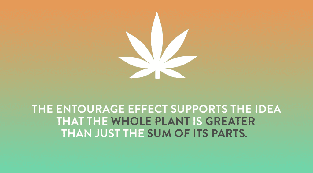 The Entourage Effect, Your Cannabis Experience